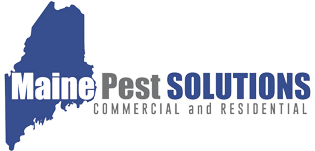 Maine Pest Solutions